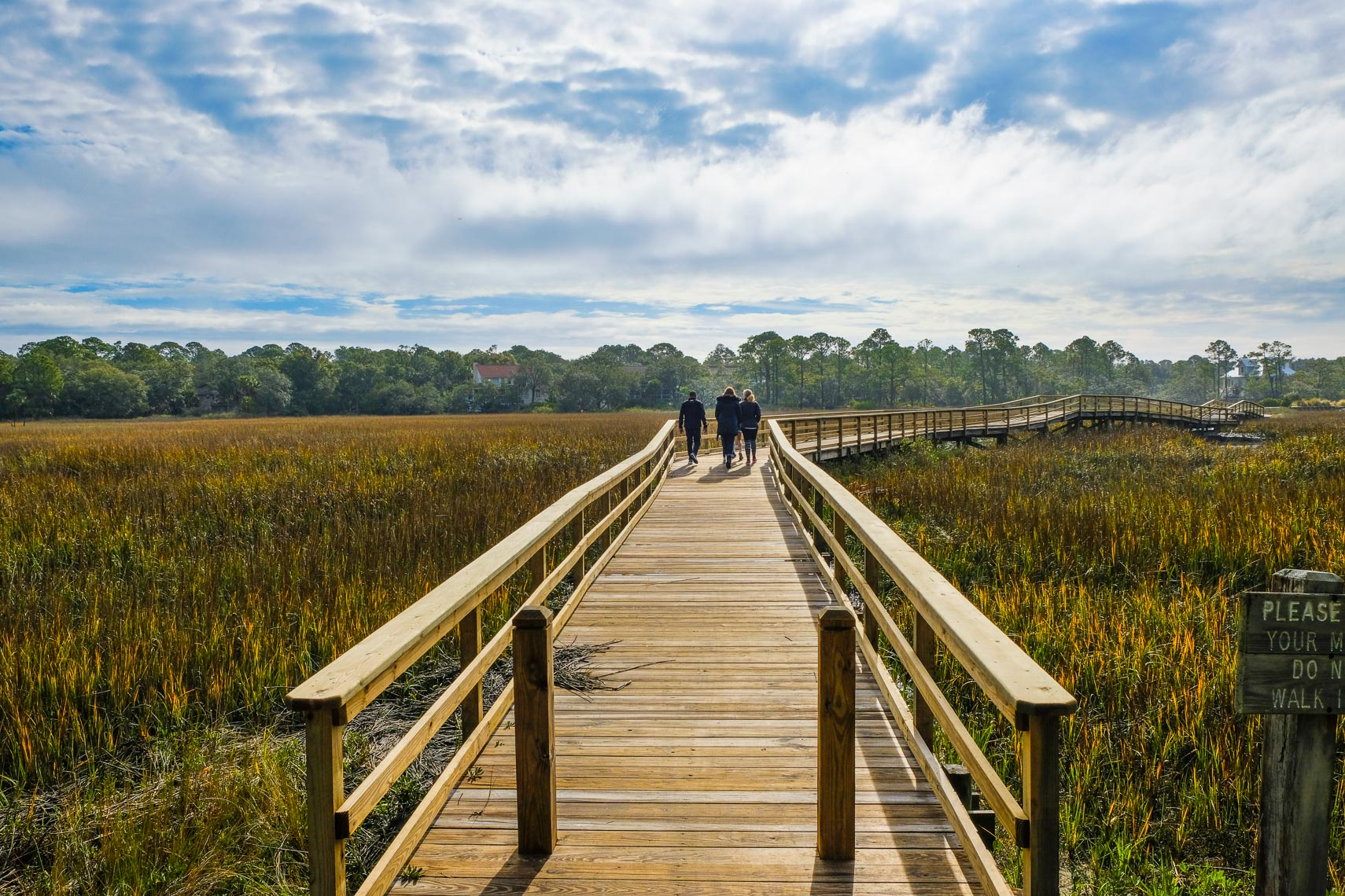 MARSH GRASS BOARDWALK